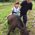 馬にも乗り、たくさん動物と触れ合うことができました。