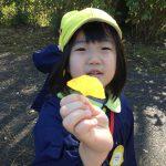 きれいなイチョウの葉っぱも見つけていました。
