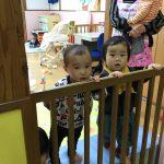 ひよこ組のお友だちもお部屋からホールの様子の覗いていました。