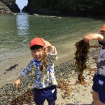 海草を見つけ大喜びでした。