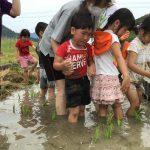 慣れない泥の感触に泣いてしまう子もいました。